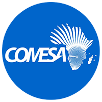 RAERESA Logo